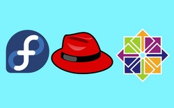 Red Hat, CentOS & Fedora: Which Is Best for You?