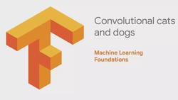 Machine Learning Foundations: Part 6 - Convolutional cats and dogs
