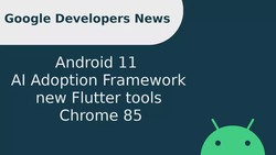 New privacy and security features in Android 11, AI Adoption Framework, new Flutter tools, & more!