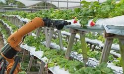 Future of Tech: Food