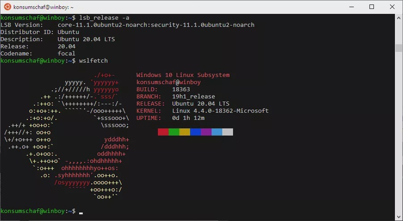 Install Ubuntu with the Windows Subsystem for Linux (WSL) on Windows 10